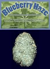 Blueberry Haze Legal Bud, composed of 100% exotic herbs and botanicals, this legal herbal bud produces a